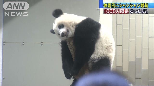 東京150周年で…上野動物園 休園日に1000人招待