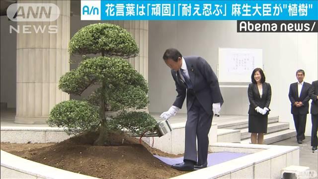 花言葉は「頑固 耐え忍ぶ」 財務省で記念植樹