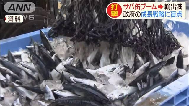 国内サバ人気、米のホタテ豊漁で政府の輸出戦略狂う