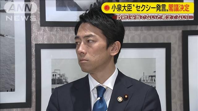 小泉大臣「セクシー」発言 政府が答弁書を閣議決定の画像